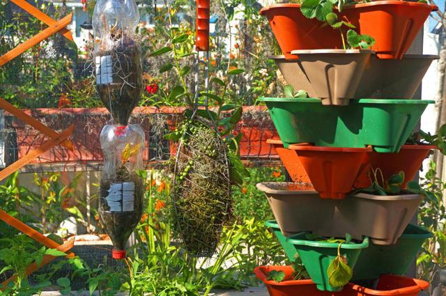 Салат в пластиковых трубах