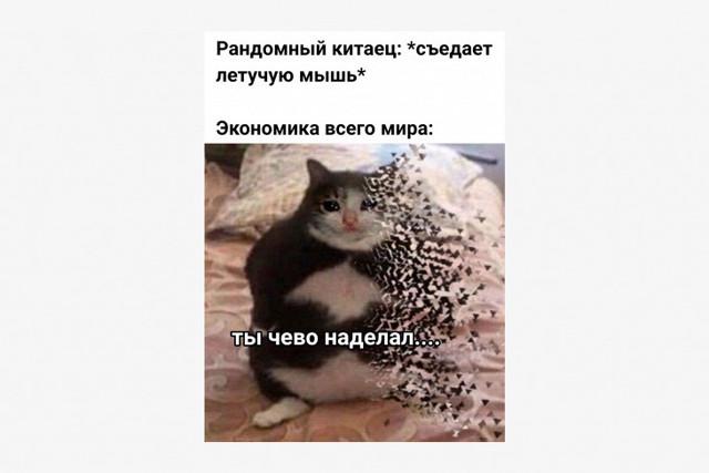 С днем трубы мем
