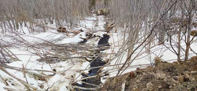 Северная нефть заморозила трубопровод